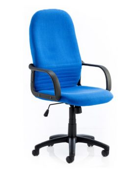 Blue manager chair