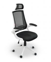 Flex ergonomic chair with headrest